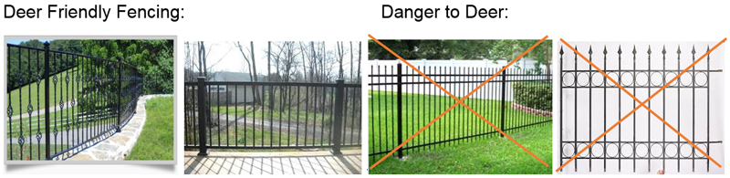 fencing examples