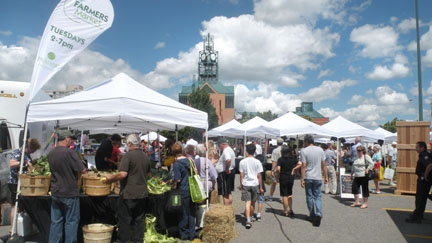 farmers' market at Pickering Town Centre