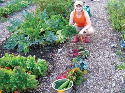 Gardener harvesting vegetables at Valley Plentiful Community Garden
